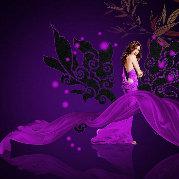 紫色猫的随想