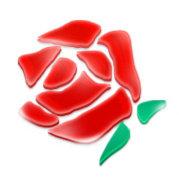 RoseData中国官方微博