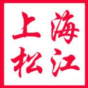 上海松江发布