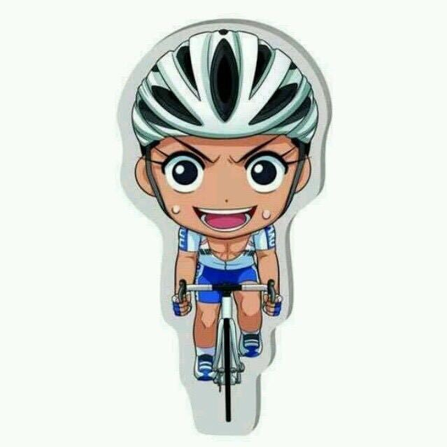 中国自行车手李富玉
