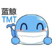 蓝鲸TMT网