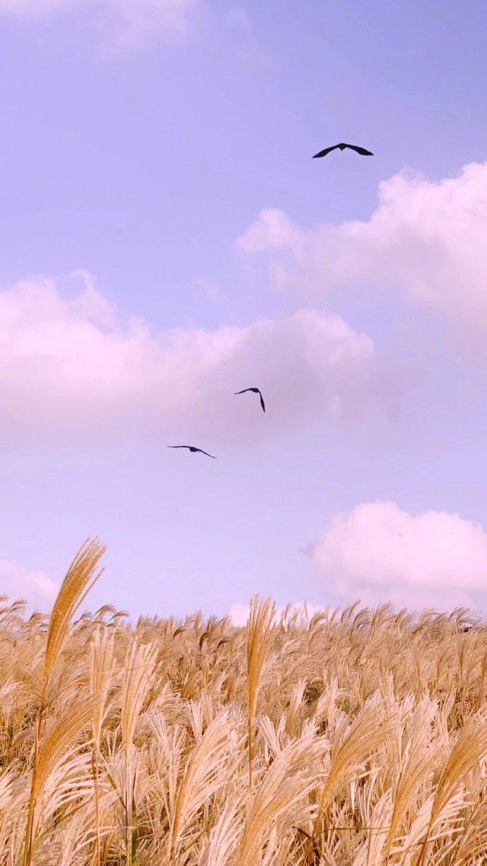 早安说说语录191025:忽晴忽雨的江湖,祝你有梦为马,随处可栖