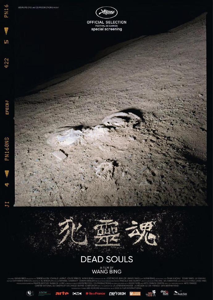死灵魂 【WEB-DL720p国语法字】【2018】【纪录片】【中国大陆/法国/瑞士】