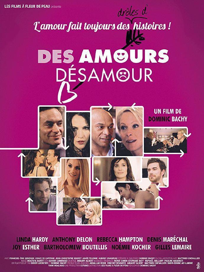 出入爱情 Des amours, désamour 【WEB-DL720p内嵌中文字幕】【2017】【喜剧】【法国】