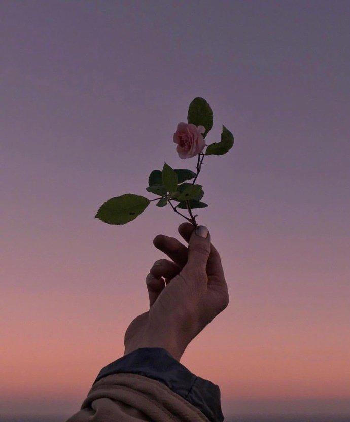 早安心情句子191127:不想暧昧,想要热烈的爱与被爱