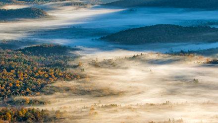 布里瓦德附近的皮斯加国家森林
