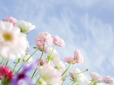 接受孤独,接受失去,接受自己是不完整的,偶尔还会被变故打败。也许接受是难以下咽的,但在无法承受的时候,要学会放过自己。一一《学会放过自己》 ~