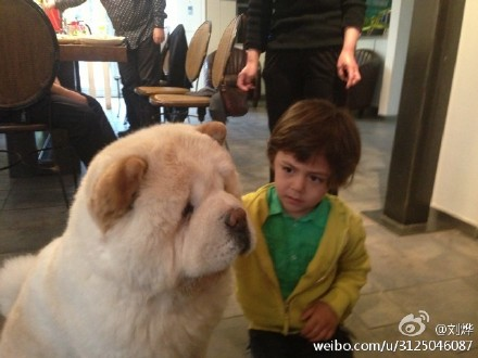 刘烨:我二子帅吗