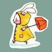 爱吃肉的兔子啊