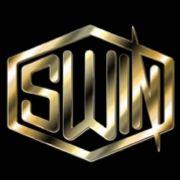 SWIN组合official