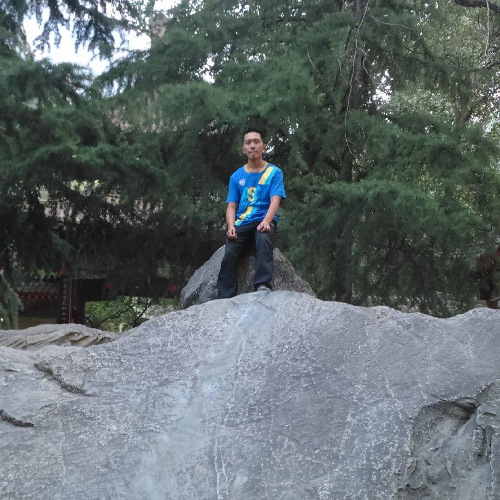冰木杉46