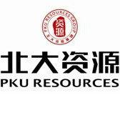 北大资源集团