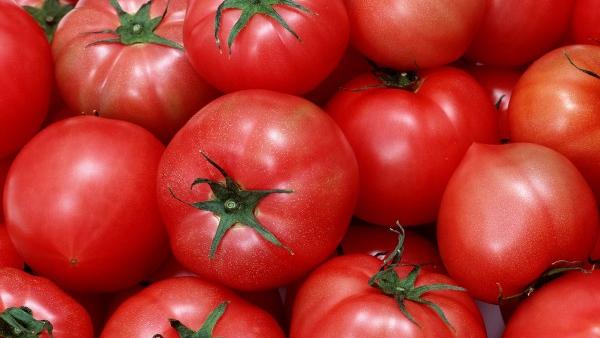 西红柿为什么没小时候好吃了?科学家找到真相的照片