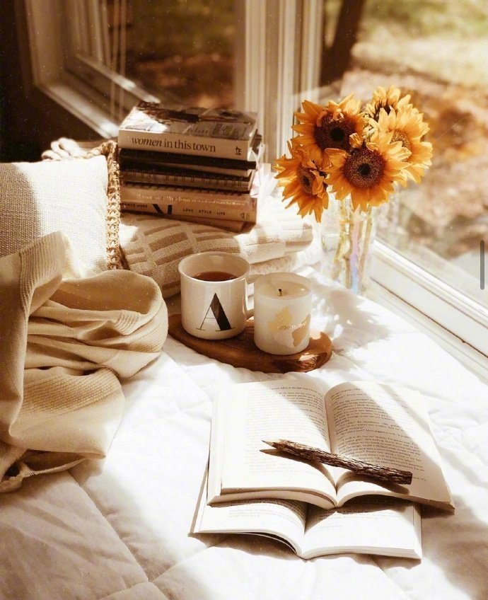 早安心语说说带美图,那些温暖人心的句子,直击心底