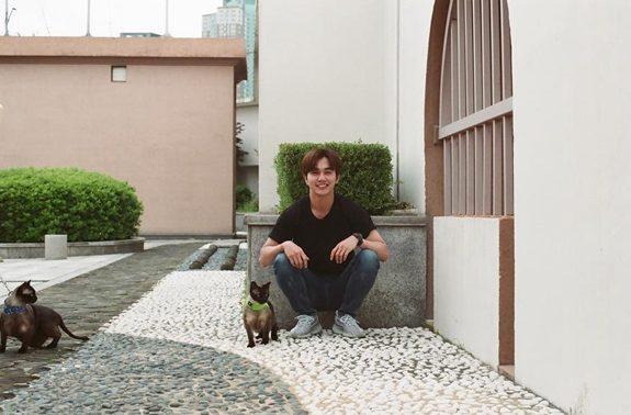韩国网红寻找好心人领养两只幼猫,没想到认养人居然是韩国大明星!插图4