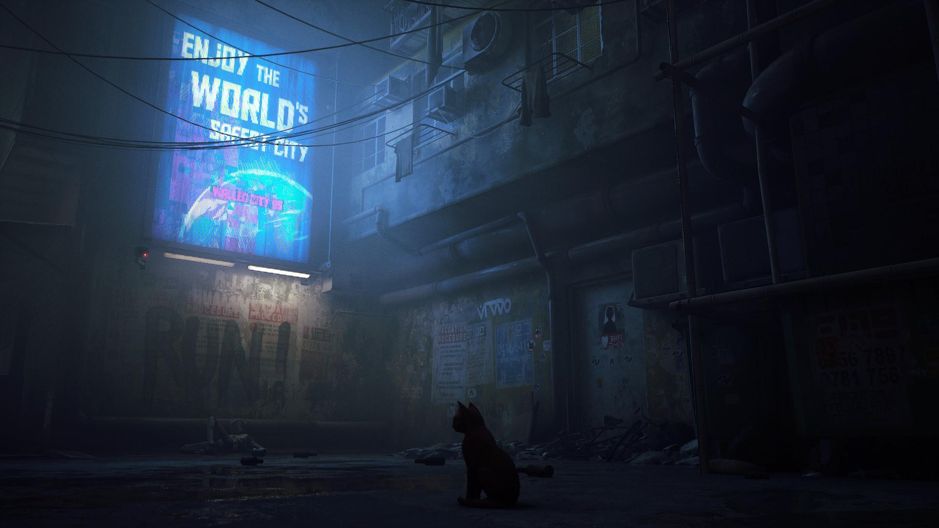 第三人称猫咪冒险游戏《迷失(Stray)》将于登陆PS5/Steam BlueTwelve Studio 游戏资讯 第4张