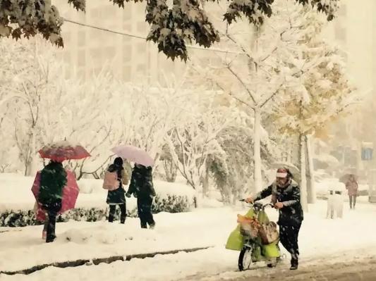 还记得2015年的那场大雪吗?