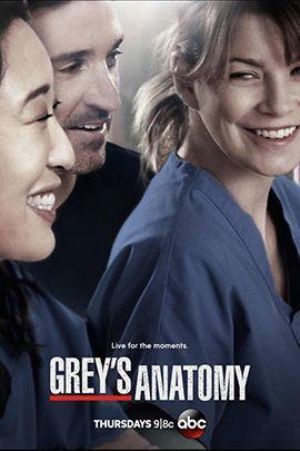 实习医生格蕾 第十季的海报