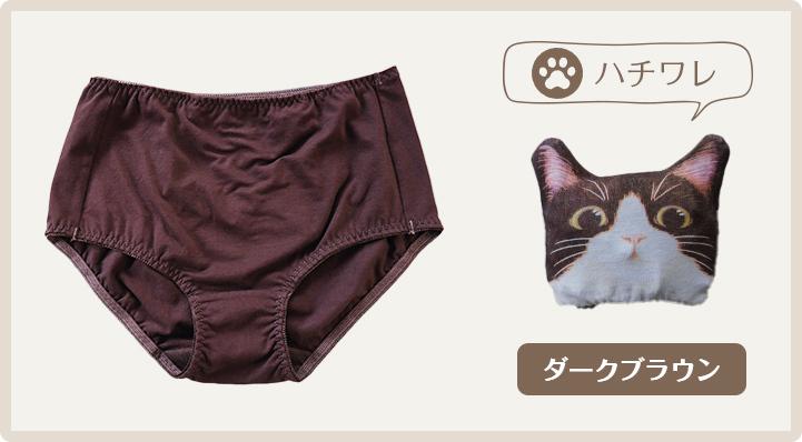 猫内裤 萌猫