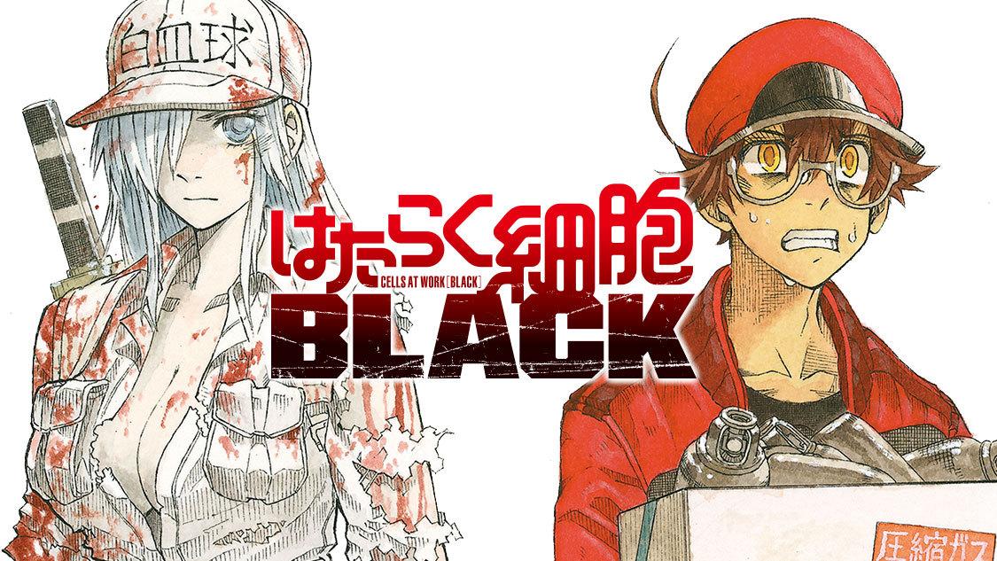 工作细胞BLACK 完结