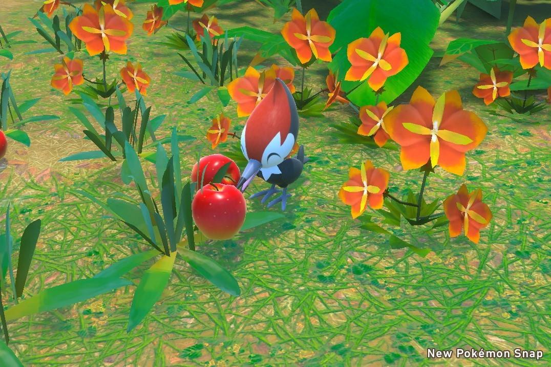 游戏《New宝可梦随乐拍》通过偷拍来发现你身边最呆萌可爱的宝贝 (4)