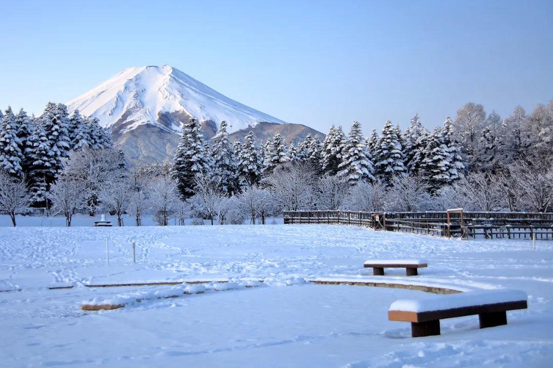 盘点日本旅行一年四季最佳时间避免堵在路上遇到囧途 (4)