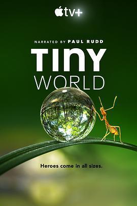 小小世界的海报