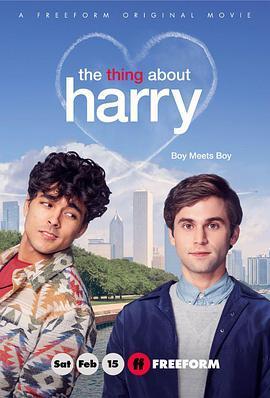 关于哈利的那些事的海报