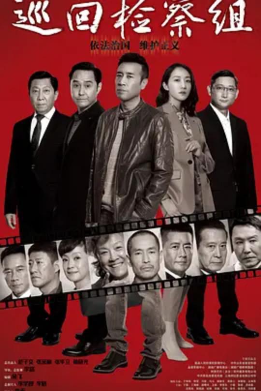 巡回检察组DVD版(国产剧)