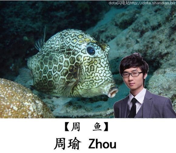 周鱼Zhou