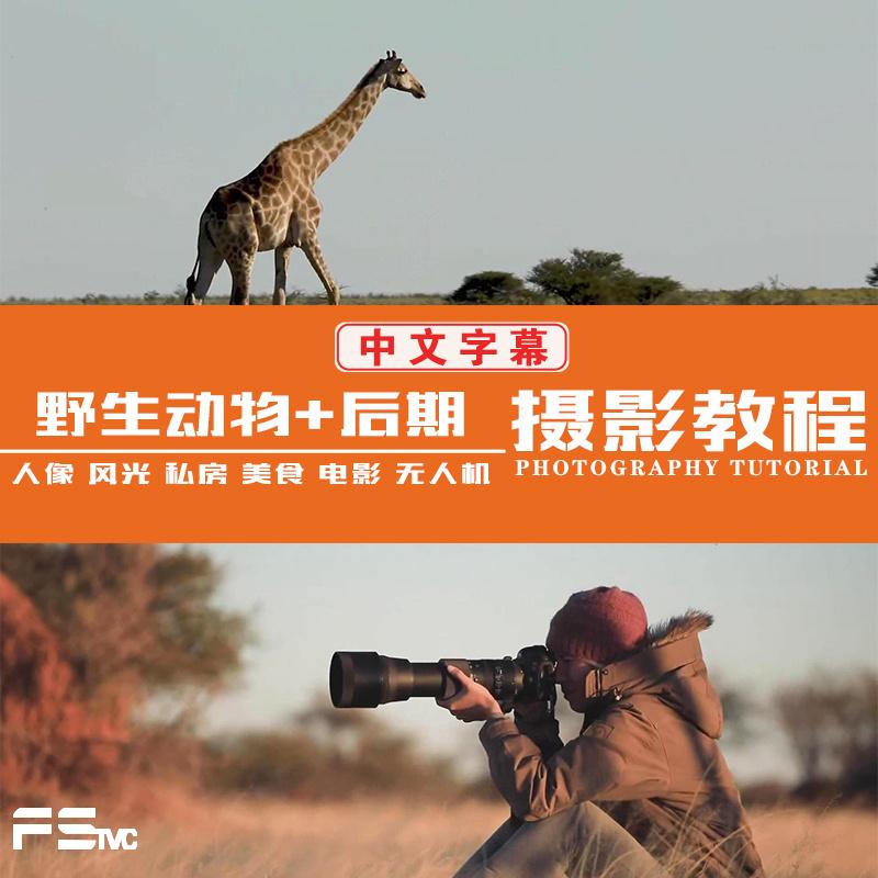 [风光摄影教程] Chase Teron的终极野生动物摄影及后期套装教程附RAW素材-中英字幕