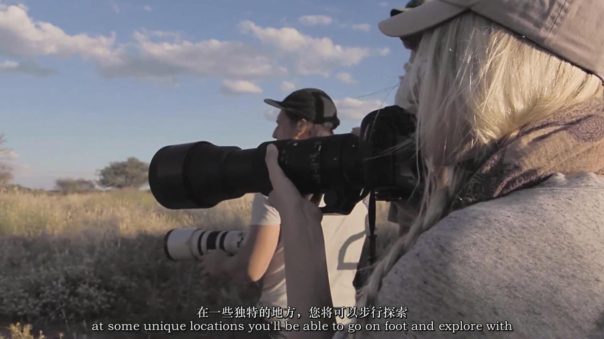 摄影教程_Chase Teron的终极野生动物摄影及后期套装教程附RAW素材-中英字幕 摄影教程 _预览图14