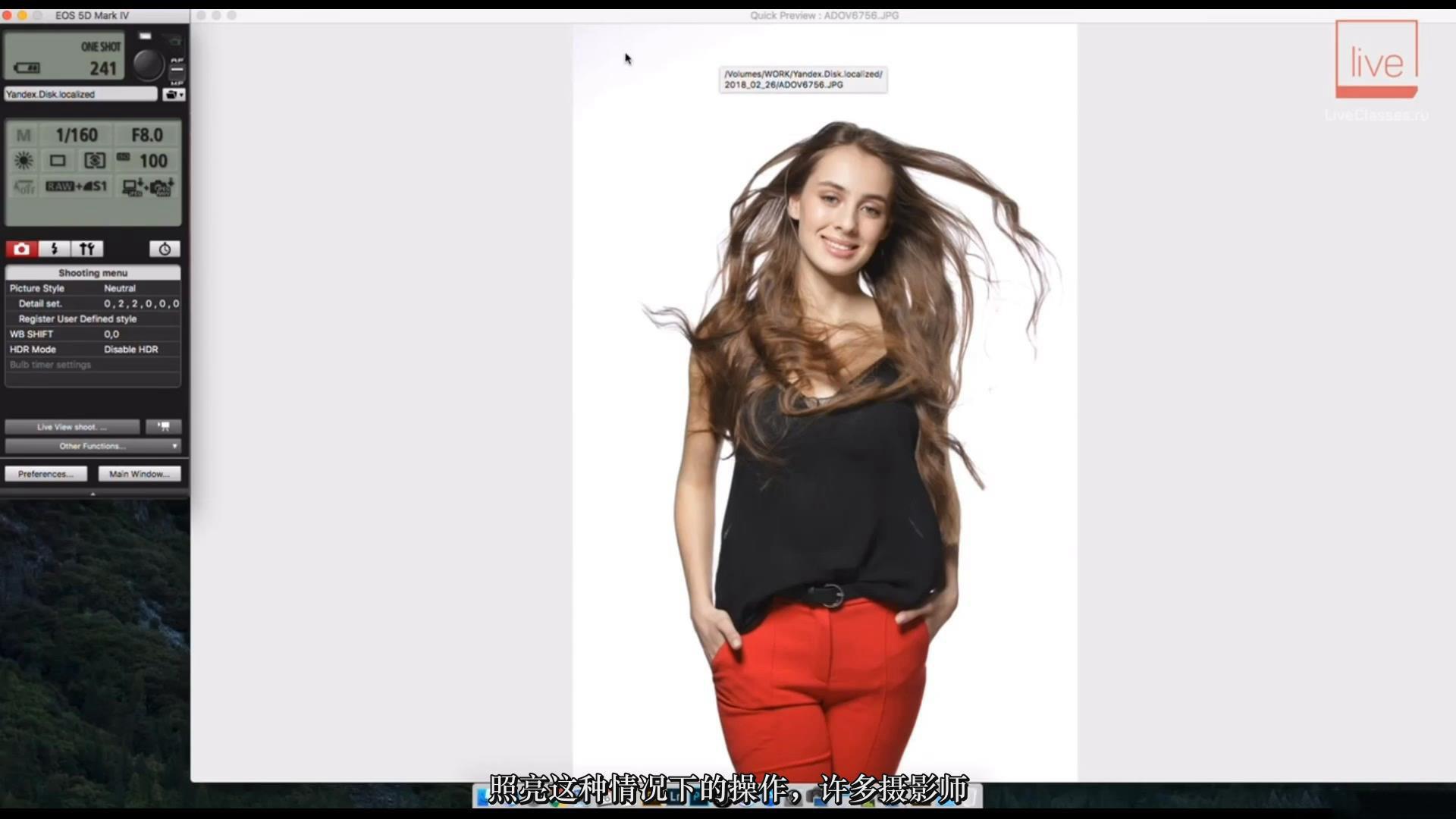 摄影教程_Liveclasses-Alexey Dovgulya使用强光或柔光拍摄酷炫工作室人像-中文字幕 摄影教程 _预览图14
