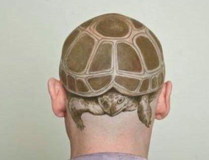 龟头这是这么来的吧~