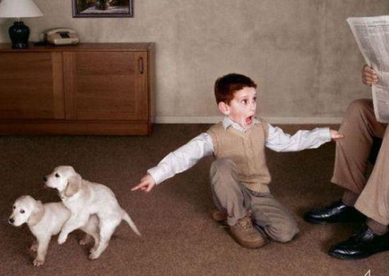 小孩子的表情才雷人~,爸爸,快看,他们在做什么!!!