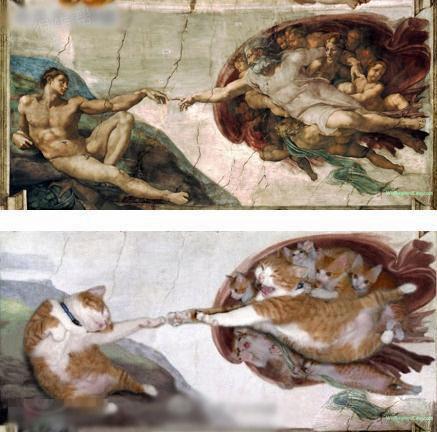 猫猫的超级模仿秀~