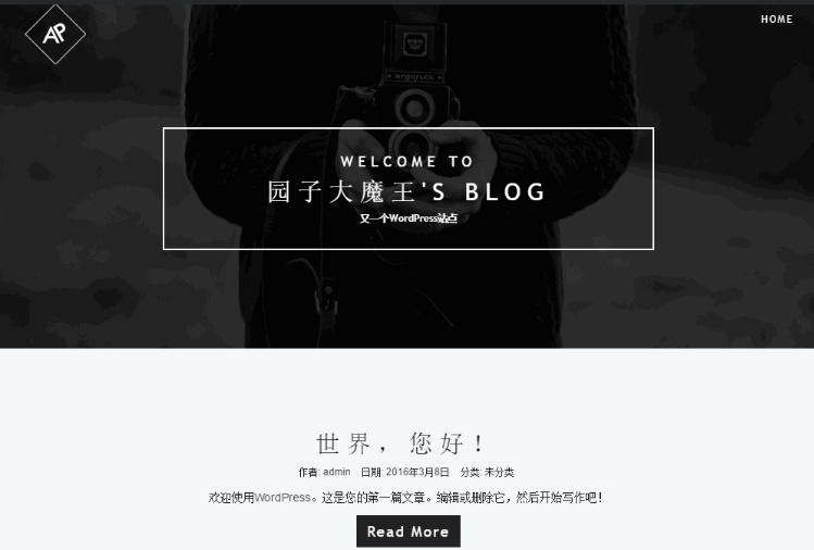 WP主题   炫酷国外主题深度汉化版-PhotoLife