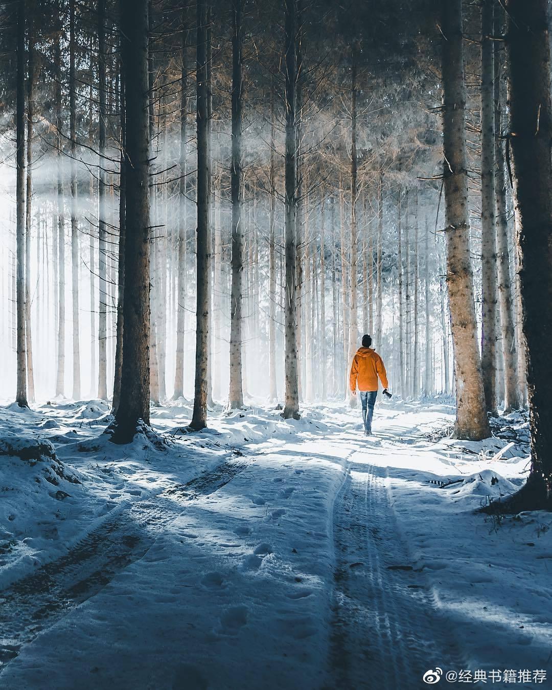 情感语录-别着急,你看冬天会过去...