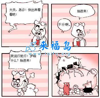 qq宝贝连续登陆_宝贝小猪迪四格漫画79_搞笑漫画_来福讲笑话
