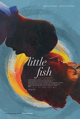 小鱼 Little Fish