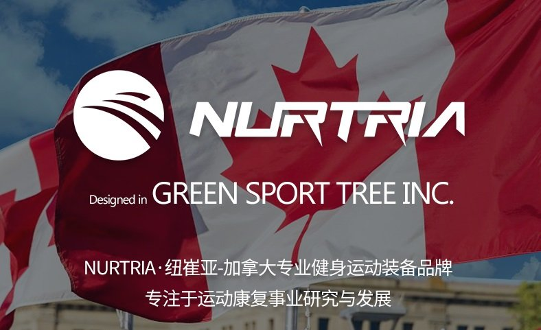 加拿大Nurtria纽崔亚品牌筋膜枪