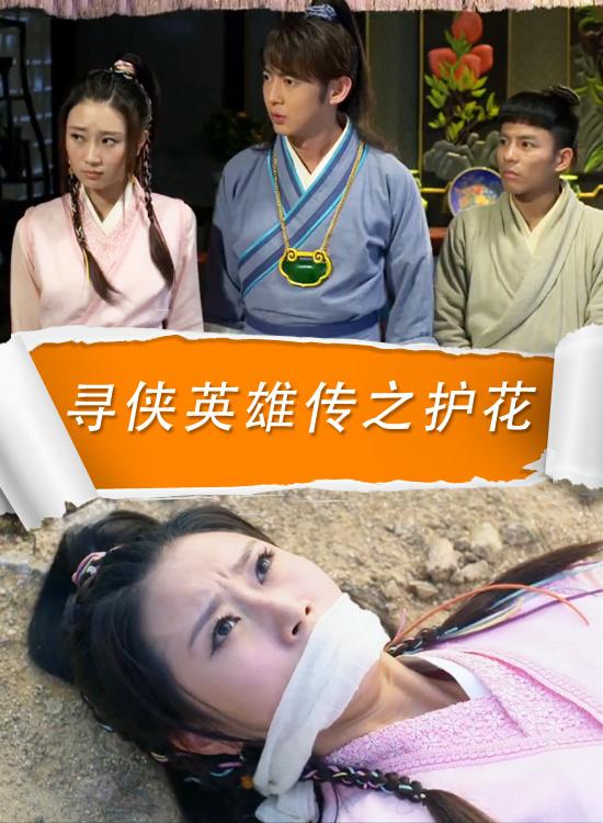 寻侠英雄传之护花(动作片)