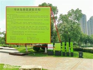 4800万荣耀20 PRO到底多强?中国移动2019年终端质量报告说出了真相