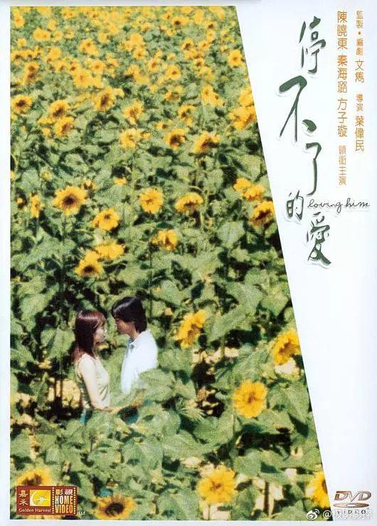 1984刘德华温碧霞《停不了的爱》BD1080P.国粤双语.中字