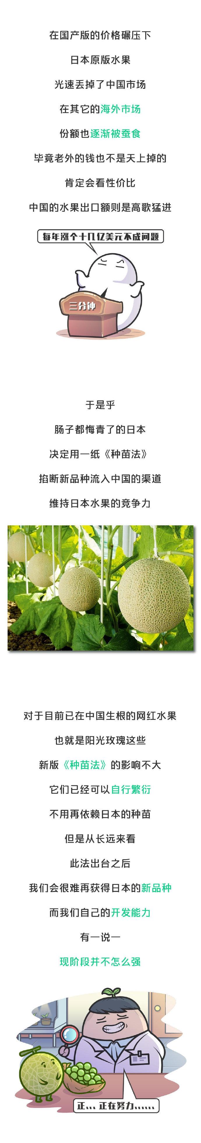 日本悄然发动水果战争!关乎我们每个人的水果自由